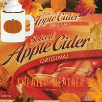 Alpine Spiced Apple Cider Drink Mix uploaded by Christina C.