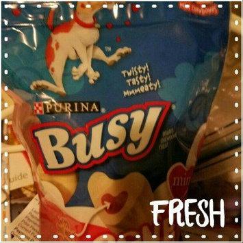 Purina Busy Bone uploaded by MyYa H.