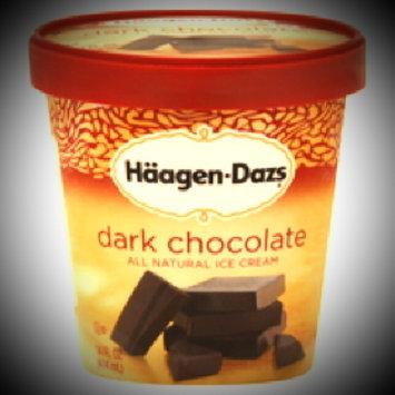 Photo of Haagen-Dazs Chocolate Ice Cream uploaded by Michelle C.