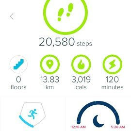 Fitbit 'Alta' Wireless Fitness Tracker, Size Small - Black uploaded by Sasha G.