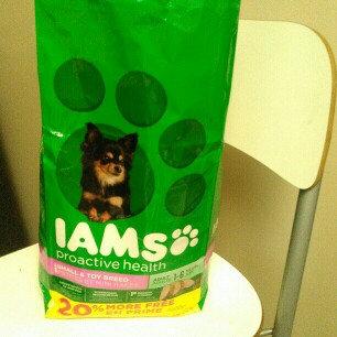 Photo of Iams™ Proactive Health™ Adult Small & Toy Breed Dog Food uploaded by Araceli P.