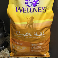 Wellpet Llc Wellpet OM08962 30 lb Wellness Just for Puppy Food uploaded by Meaghan B.