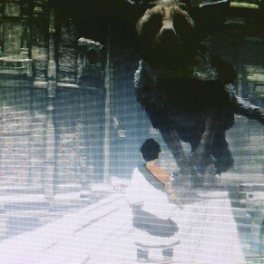 Photo of The Last Guardian (PS4) uploaded by Sabrina S.