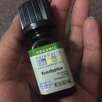 Aura Cacia Certified Organic Essential Oil - Tea Tree uploaded by Sarah S.
