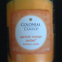 Fragranced in-line Container CC022.2176 22oz. Oval Apricot Mint Candle uploaded by Alina B.