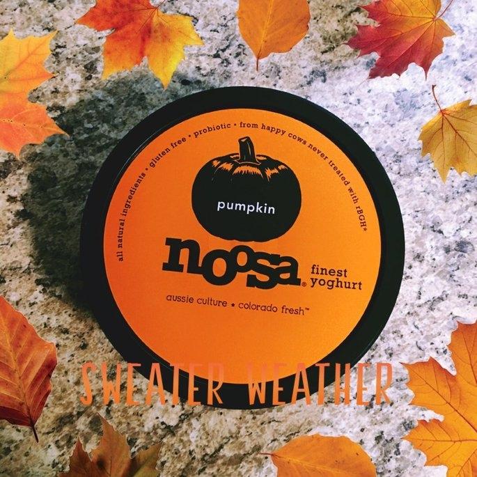 Generic Noosa Yoghurt Colorado Fresh Pumpkin Yogurt, 8 oz uploaded by Kady E.