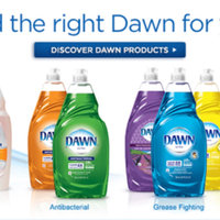 Dawn Ultra Antibacterial Dishwashing Liquid Apple Blossom uploaded by Rachel B.