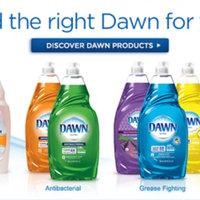 Dawn Ultra Antibacterial Dishwashing Liquid Apple Blossom uploaded by Rachel B.