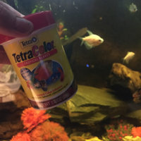 Tetra Tetracolor Tropical Flakes Fish Food uploaded by Angela H.