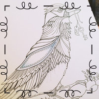 Enchanted Forest: An Inky Quest & Coloring Book uploaded by Rachel H.