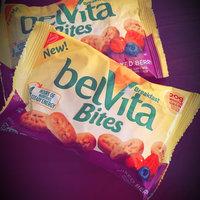 Nabisco belVita Bites Mini Breakfast Biscuits Mixed Berry uploaded by Pamela M.