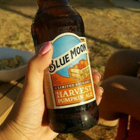 Blue Moon Seasonal Collection Harvest Pumpkin Ale uploaded by Jesica M.