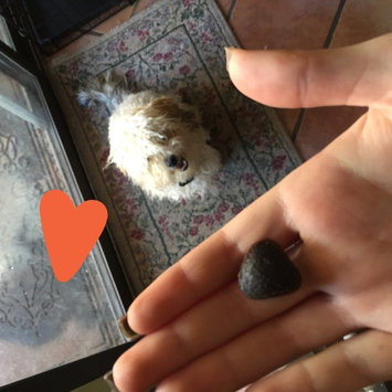 Photo of Supreme Quality Pet Foods Supreme Healthy Max Hip and Joint Dog Treat uploaded by Karlee A.