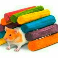 Super Pet Guinea Pig Tropical Fiddle Sticks Hideout - Medium uploaded by C W.