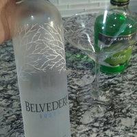 Belvedere Vodka uploaded by Brittani S.