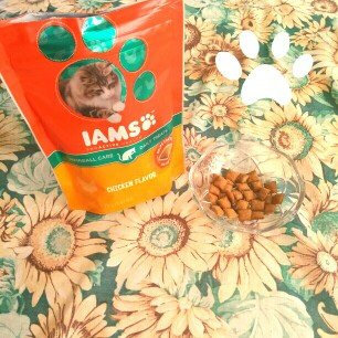 Photo of Iams™ Proactive Health™ Hairball Chicken Flavor Daily Treats Cat Food uploaded by ismaray g.