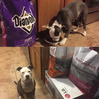 Diamond Puppy Formula Dry Dog Food 40lb uploaded by Christina B.