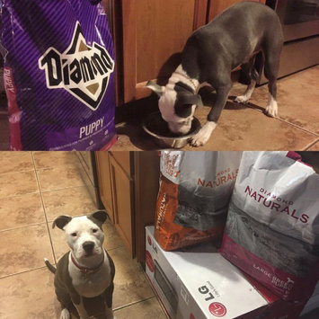 Photo of Diamond Puppy Formula Dry Dog Food 40lb uploaded by Christina B.