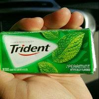 Trident Spearmint Sugar Free Gum uploaded by Reyna C.