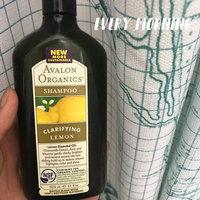 Avalon Organics Clarifying Lemon Shampoo uploaded by Williana L.