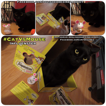 Photo of TEMPTATIONS™ Snacky Mouse Cat Toy uploaded by Joanna F.