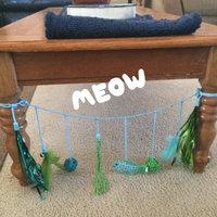 Martha Stewart PetsA Chair Tie Dangler Cat Toy uploaded by Wendy G.