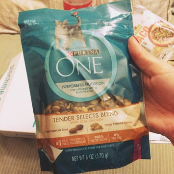 Photo of Purina ONE® Dry Food uploaded by Felecia F.