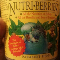 Lafeber Company Parakeet Nutri-berries 4 Pounds - 81632 uploaded by Jeanett A.