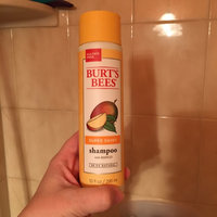Burt's Bees Super Shiny Shampoo with Mango uploaded by Sara B.