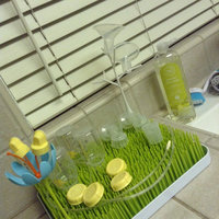 Boon Lawn Countertop Drying Rack uploaded by Rocio V.