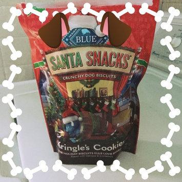 Photo of THE BLUE BUFFALO CO. BLUE™ SantaSnacks® Oatmeal & Cinnamon Crunchy Dog Biscuits Dog Treat uploaded by Amanda R.