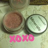 Wet N Wild Ultimate Minerals Loose Blush uploaded by Janine T.