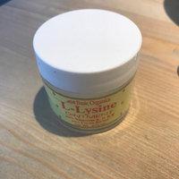 Basic Organics - L-Lysine Ointment - 0.88 oz. uploaded by Emma B.