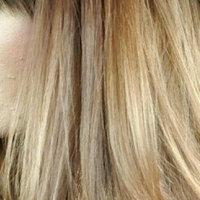 Sebastian Cellophanes- Chocolate Brown uploaded by Chelsie P.
