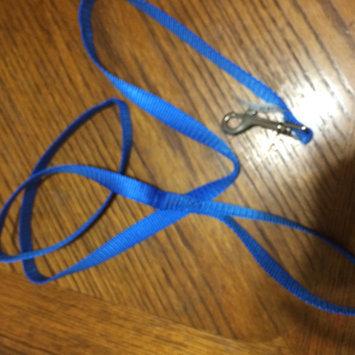 Rose America Corp. Petwear Medium Leash, Blue uploaded by Jeanette M.