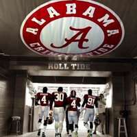 University of Alabama Crimson Tide uploaded by Tammy T.