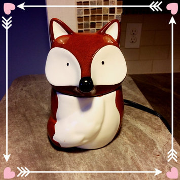 Scentsy Warmers uploaded by Alexis W.