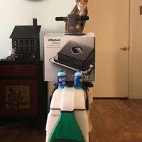 BISSELL Big Green Clean Machine - 86T3 uploaded by Jamilla C.