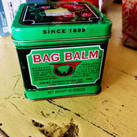 Vermont's Original Bag Balm Protective Ointment uploaded by Ashley L.