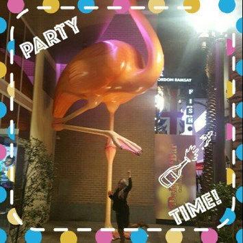 The Flamingo Las Vegas  uploaded by Shantal A.