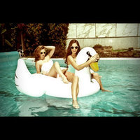 Swimline Giant Inflatable Black Swan Swimming Pool Riding Float uploaded by Bita S.