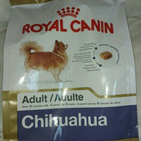 Royal CaninA Chihuahua 28TM Adult Dog Food uploaded by Lacey F.