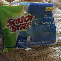 Scotch-Brite Basic Non-Scratch Scrub Sponge uploaded by Maria N.
