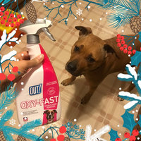 OUT! Oxy Pet Stain And Odor Remover uploaded by Jessie R.