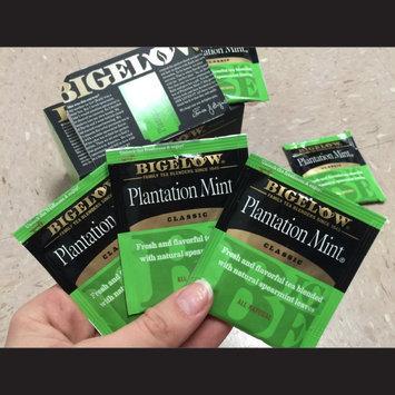 Photo of Bigelow Plantation Mint Tea uploaded by Danielle S.