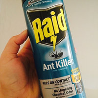 Raid Ant Killer Pine Forest Fresh Scent uploaded by Jahara C.