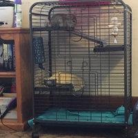 Ware Mfg Pet Indoor Hutch 4 Level uploaded by Alex P.