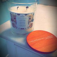 Chesapeake Bay Candle 7.5-oz. Sea Salt (Blue) & Driftwood Jar Candle uploaded by Véro S.