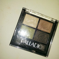 Palladio Eyeshadow Quad uploaded by Vanessa  R.
