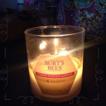 Photo of Blyth Home Scents 111217 Burts Bees Farm Fresh Apple Small Jar Candle Pack of 4 uploaded by Hannah M.
